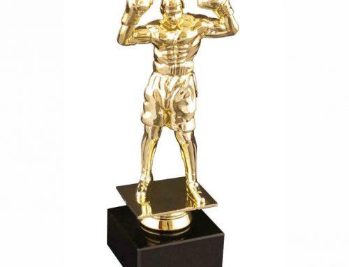 фигура бокс 992